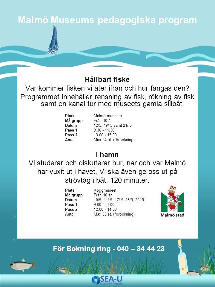 - Det kommer att vara sagostund om Kalle Krabba och havsbandet, utforskning av livet i havet genom programmet Bland krabbor och tång .