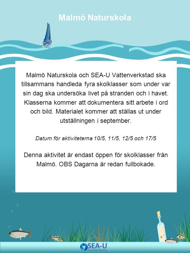 Malmö Naturskola och SEA-U Vattenverkstad ska tillsammans handleda fyra skolklasser som under var sin dag ska undersöka livet på stranden och i havet.