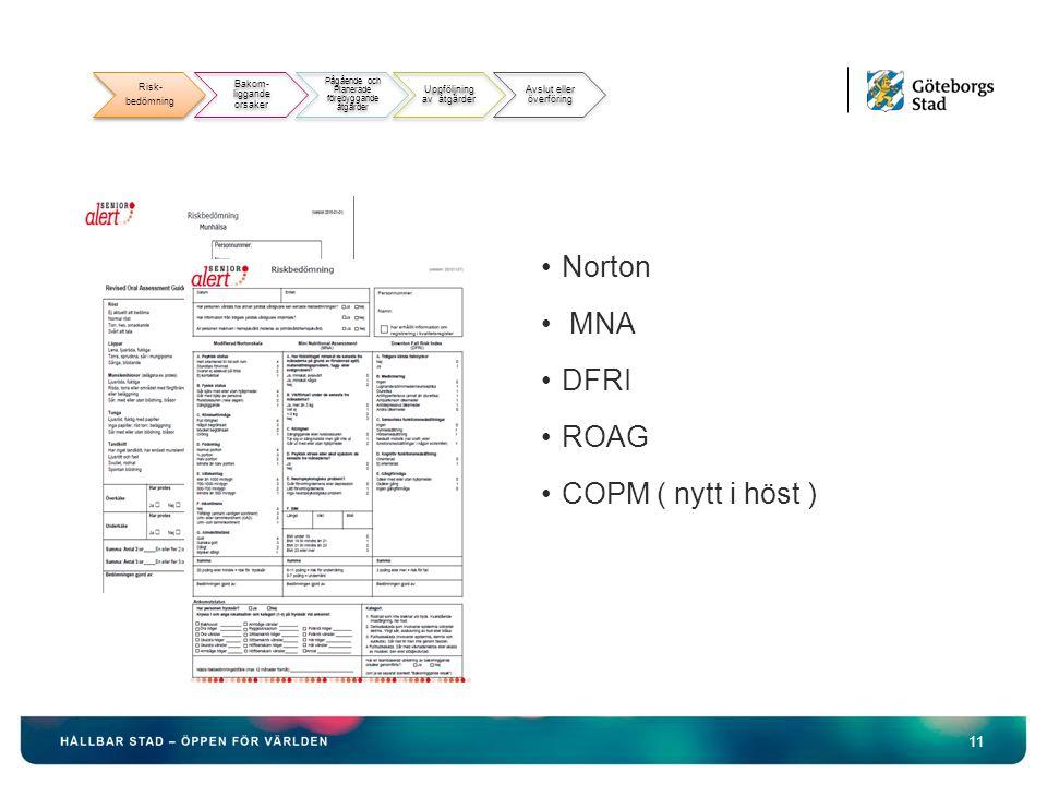 11 Norton MNA DFRI ROAG COPM ( nytt i höst ) Risk- bedömning Bakom- liggande orsaker Pågående och Planerade förebyggande åtgärder Uppföljning av åtgärder Avslut eller överföring