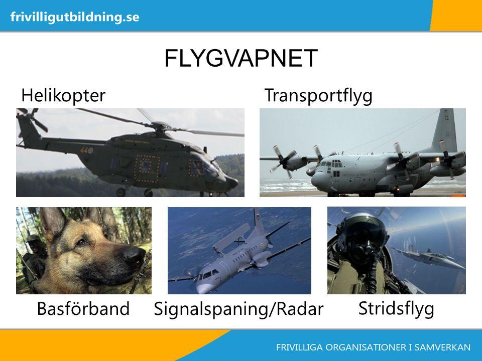 FLYGVAPNET HelikopterTransportflyg BasförbandSignalspaning/Radar Stridsflyg