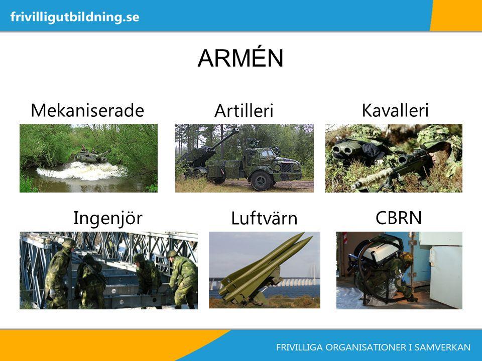 ARMÉN Ingenjör Luftvärn CBRN Mekaniserade Artilleri Kavalleri