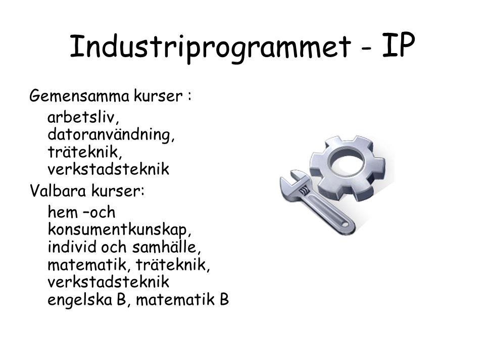 Industriprogrammet - IP Gemensamma kurser : arbetsliv, datoranvändning, träteknik, verkstadsteknik Valbara kurser: hem –och konsumentkunskap, individ och samhälle, matematik, träteknik, verkstadsteknik engelska B, matematik B