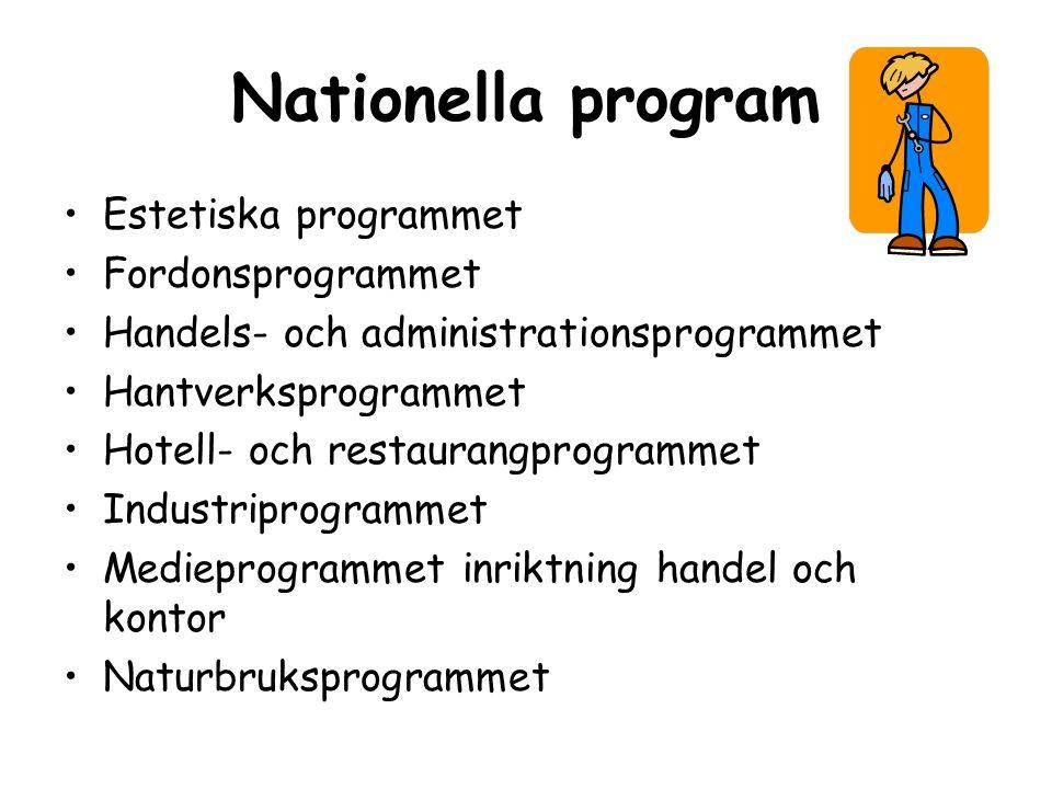 Nationella program Estetiska programmet Fordonsprogrammet Handels- och administrationsprogrammet Hantverksprogrammet Hotell- och restaurangprogrammet Industriprogrammet Medieprogrammet inriktning handel och kontor Naturbruksprogrammet