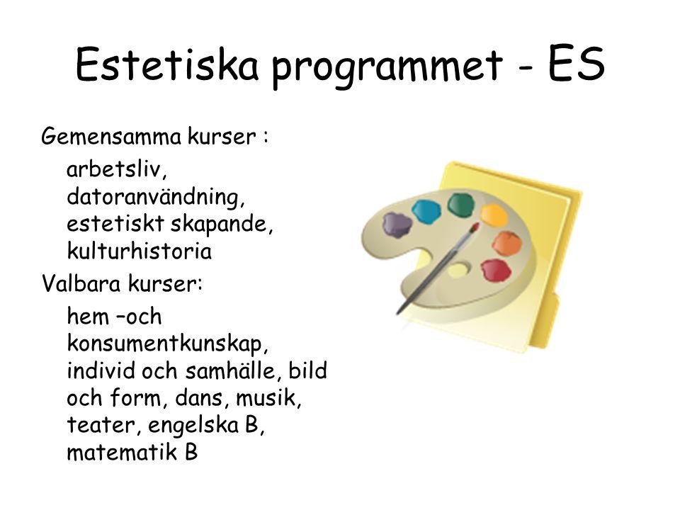 Estetiska programmet - ES Gemensamma kurser : arbetsliv, datoranvändning, estetiskt skapande, kulturhistoria Valbara kurser: hem –och konsumentkunskap, individ och samhälle, bild och form, dans, musik, teater, engelska B, matematik B