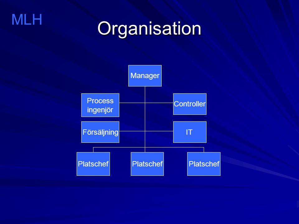 Organisation Manager Platschef Controller IT Process ingenjör Försäljning