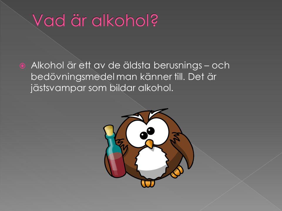  Alkohol är ett av de äldsta berusnings – och bedövningsmedel man känner till. Det är jästsvampar som bildar alkohol.