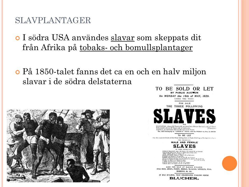 SLAVPLANTAGER I södra USA användes slavar som skeppats dit från Afrika på tobaks- och bomullsplantager På 1850-talet fanns det ca en och en halv miljon slavar i de södra delstaterna