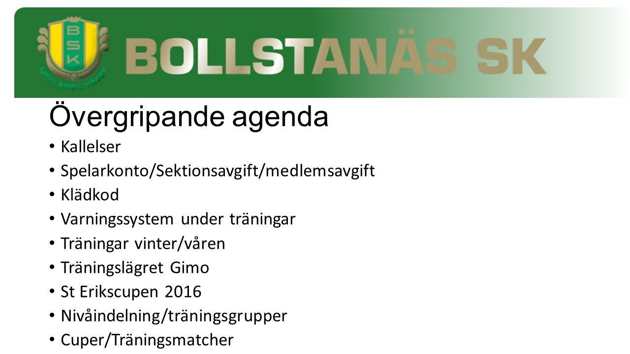 Övergripande agenda Kallelser Spelarkonto/Sektionsavgift/medlemsavgift Klädkod Varningssystem under träningar Träningar vinter/våren Träningslägret Gi