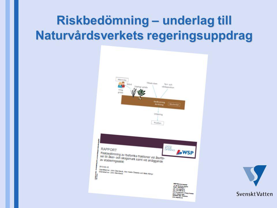 Riskbedömning – underlag till Naturvårdsverkets regeringsuppdrag
