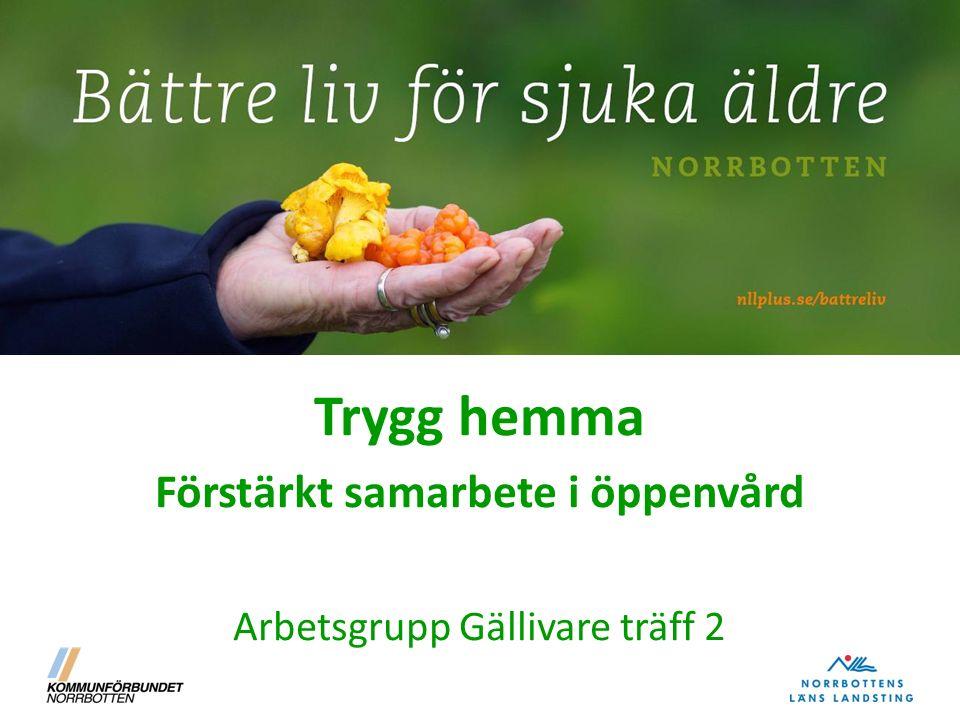 Trygg hemma Förstärkt samarbete i öppenvård Arbetsgrupp Gällivare träff 2