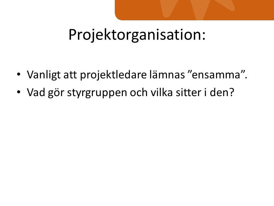 Projektorganisation: Vanligt att projektledare lämnas ensamma .