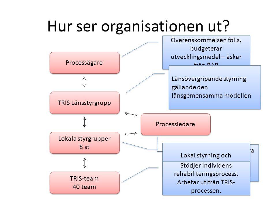 Hur ser organisationen ut.