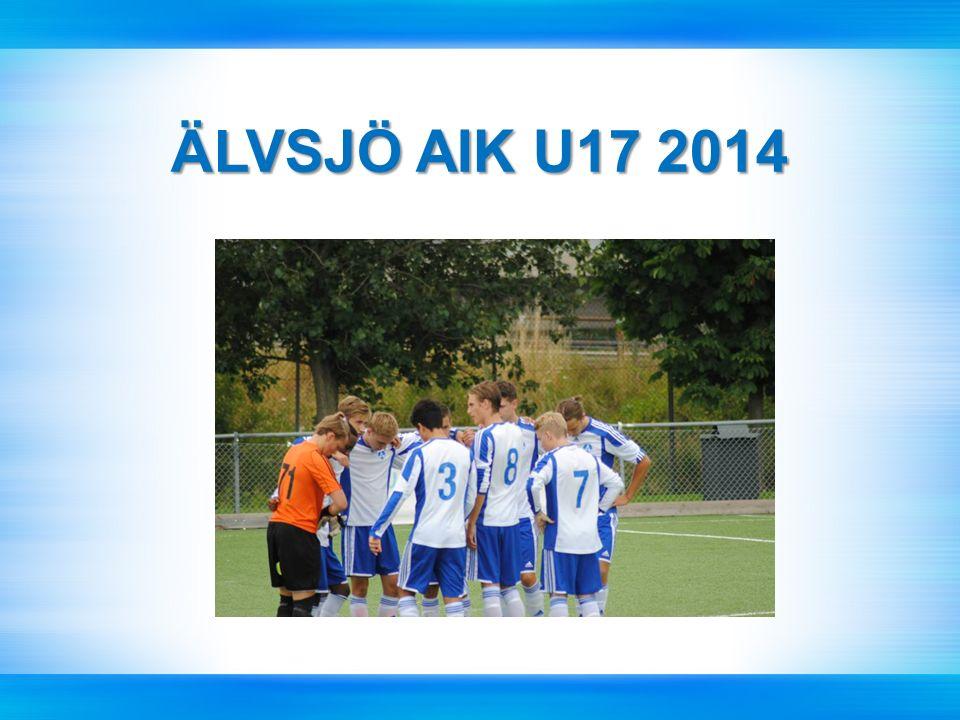 ÄLVSJÖ AIK U17 2014