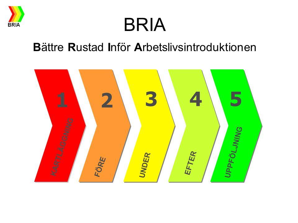 BRIA Bättre Rustad Inför Arbetslivsintroduktionen 1 KARTLÄGGNING FÖRE UNDER UPPFÖLJNING EFTER 2 453 BRIA