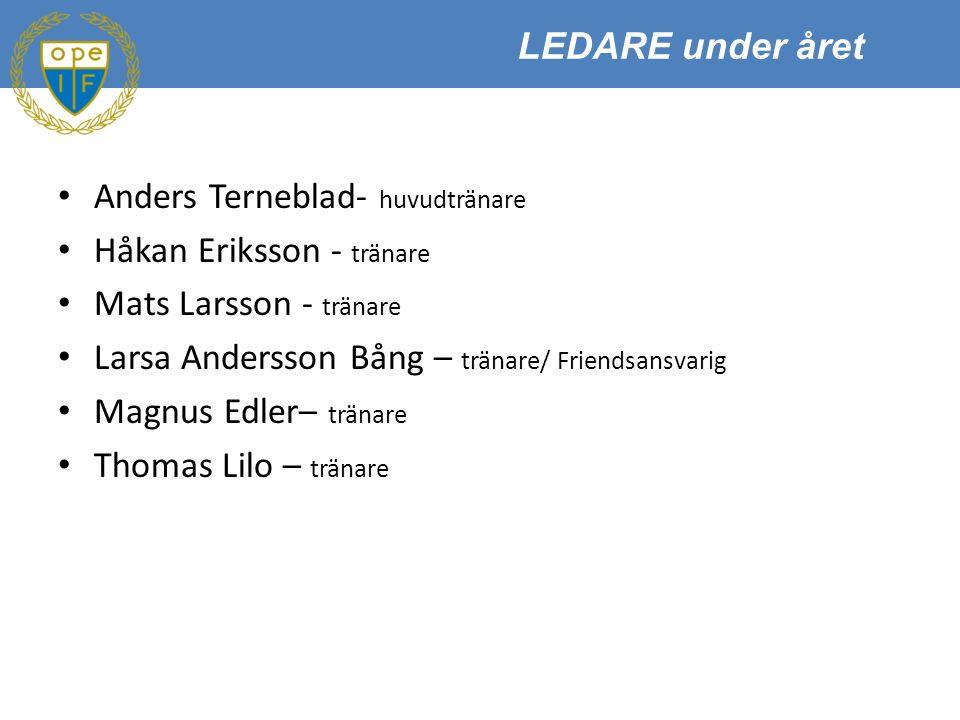 Anders Terneblad- huvudtränare Håkan Eriksson - tränare Mats Larsson - tränare Larsa Andersson Bång – tränare/ Friendsansvarig Magnus Edler– tränare Thomas Lilo – tränare LEDARE under året