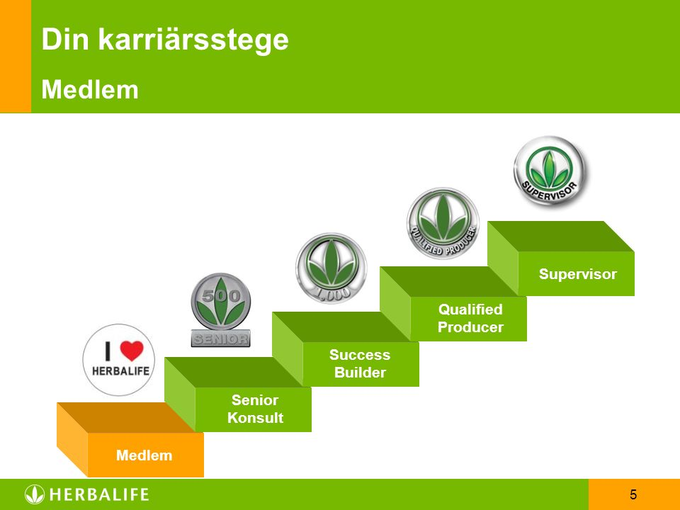 5 Din karriärsstege Medlem Success Builder Qualified Producer Supervisor Medlem Senior Konsult