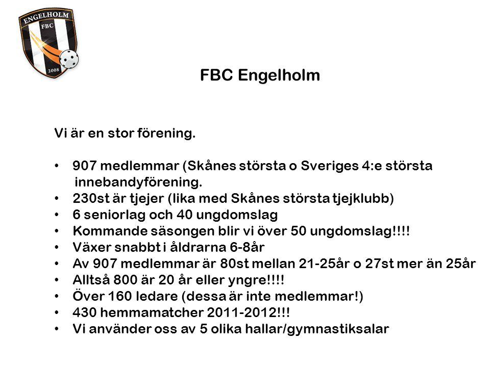 FBC Engelholm Framgångar på Ungdomssidan Vann SM för flickor 16, 2010 Blev silvermedaljörer för flickor 18, 2004.