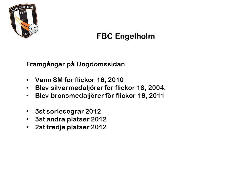 FBC Engelholm Problem områden Dyrt att administrera alla lag Svåre för varje år att finna ideella krafter Dommarkostnader Klädkostnader Hallhyrorna (vid inträde!) Hallhyrorna generellt Vi behöver förbättra vårt samarbete med kommunen Vad är FBC Engelholms insats värd ?