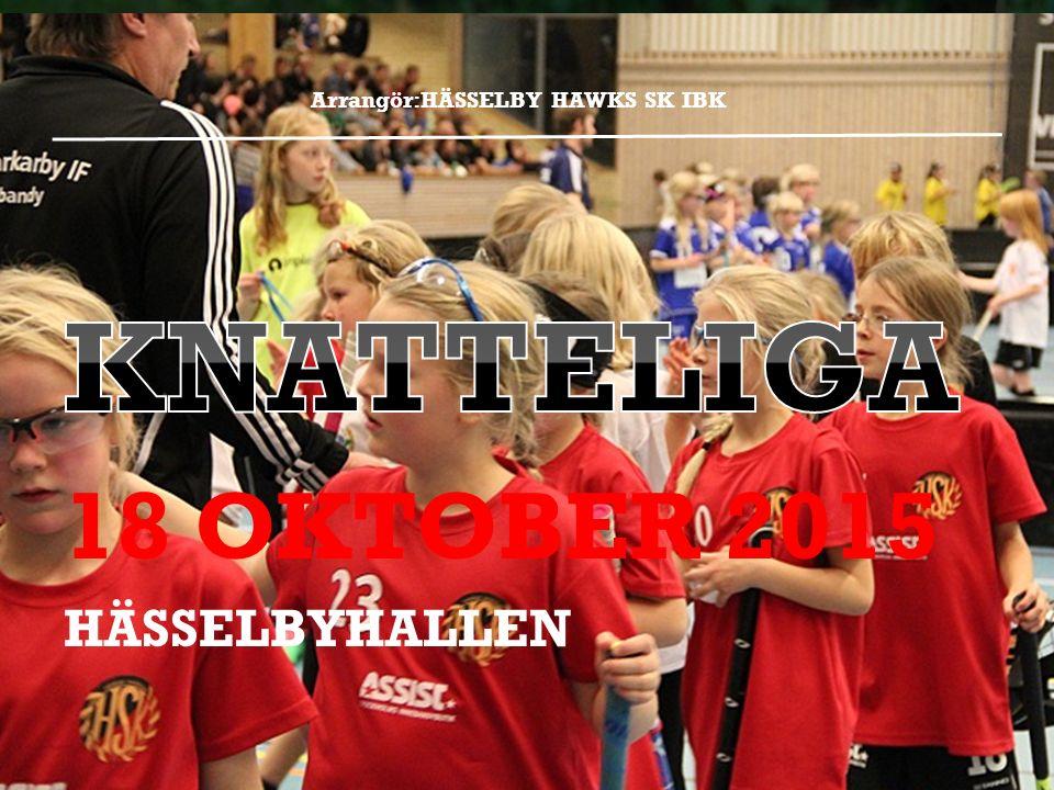 Arrangör:HÄSSELBY HAWKS SK IBK