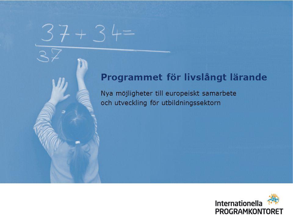Projekt – partnerskap Comenius och Grundtvig partnerskap (f.d.
