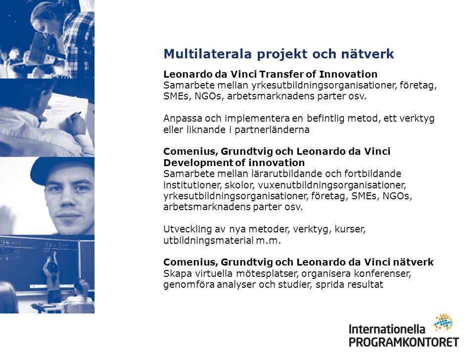 Multilaterala projekt och nätverk Leonardo da Vinci Transfer of Innovation Samarbete mellan yrkesutbildningsorganisationer, företag, SMEs, NGOs, arbetsmarknadens parter osv.