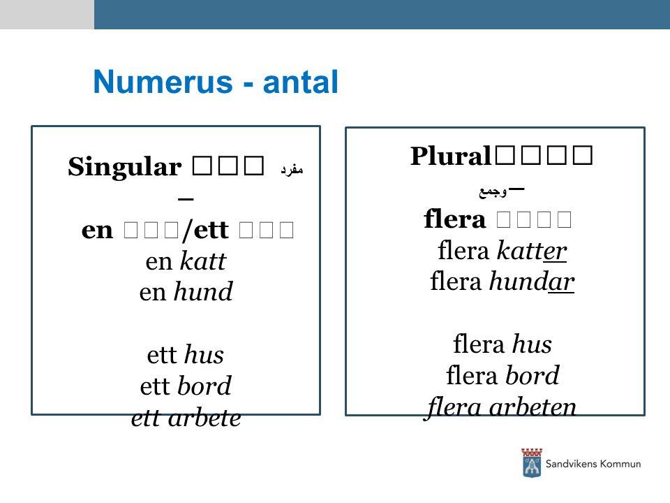Numerus - antal Singular مفرد – en /ett en katt en hund ett hus ett bord ett arbete Plural وجمع – flera  flera katter flera hundar flera hus flera bo