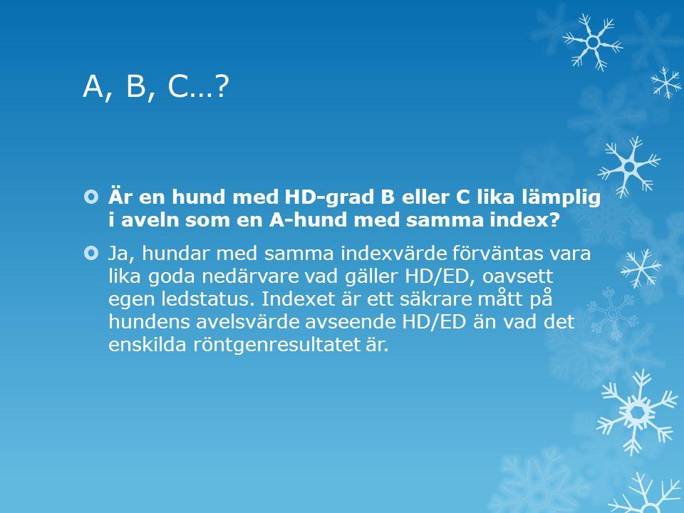 A, B, C…?  Är en hund med HD-grad B eller C lika lämplig i aveln som en A-hund med samma index?  Ja, hundar med samma indexvärde förväntas vara lika