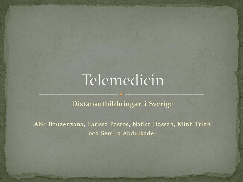 Distansutbildningar i Sverige Abir Bouzenzana, Larissa Bastos, Nafisa Hassan, Minh Trinh och Semira Abdulkader