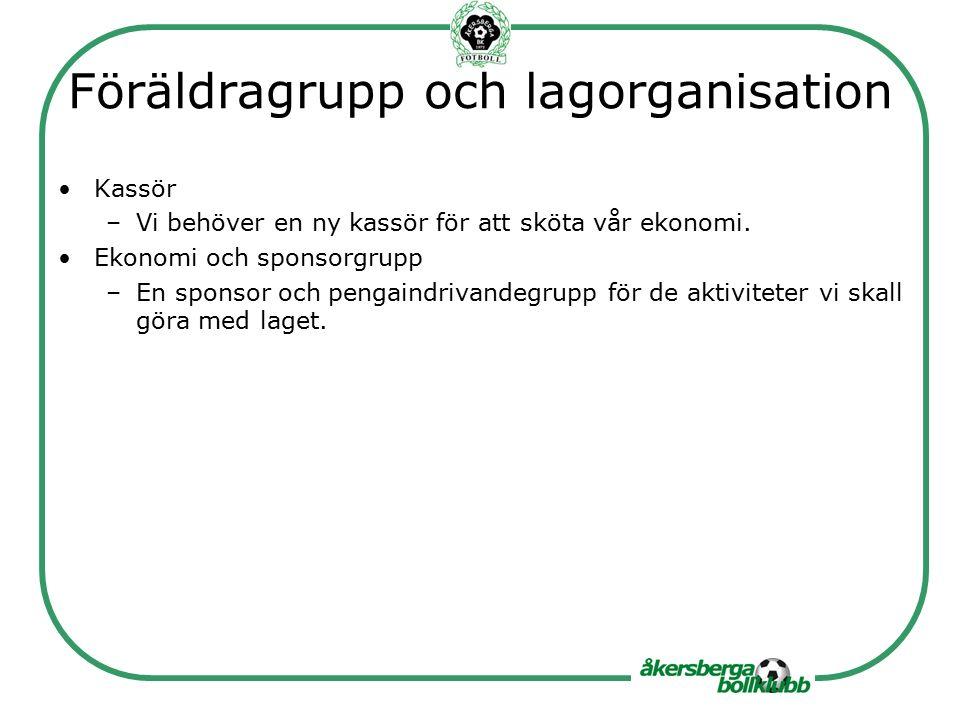 Föräldragrupp och lagorganisation Kassör –Vi behöver en ny kassör för att sköta vår ekonomi.