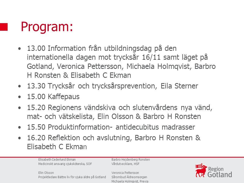 13.00 Information från utbildningsdag på den internationella dagen mot trycksår 16/11 samt läget på Gotland, Veronica Pettersson, Michaela Holmqvist,