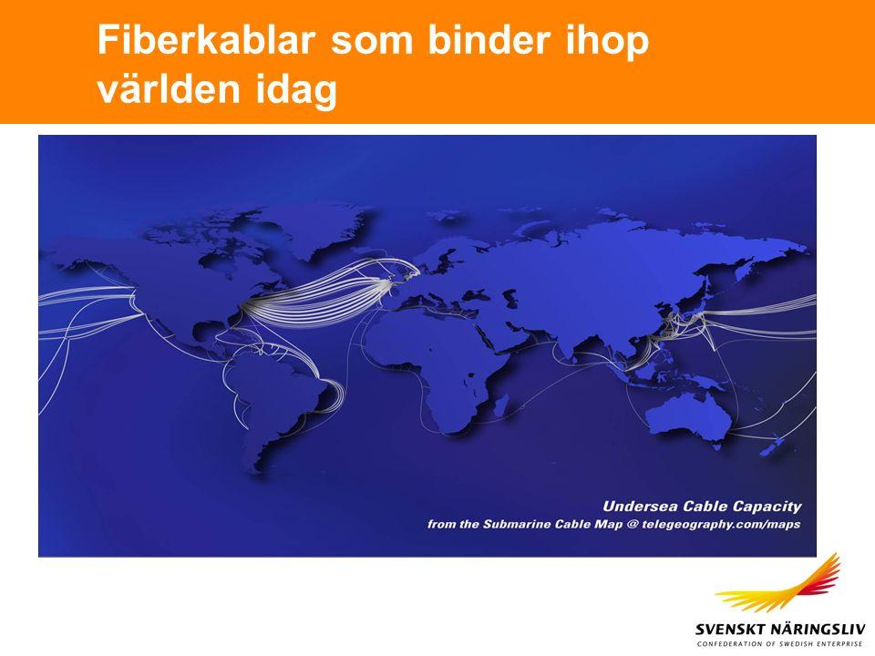 Fiberkablar som binder ihop världen idag