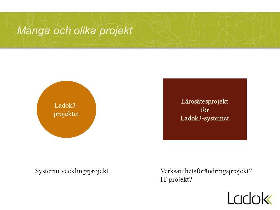 Många och olika projekt Ladok3- projektet Lärosätesprojekt för Ladok3-systemet SystemutvecklingsprojektVerksamhetsförändringsprojekt.