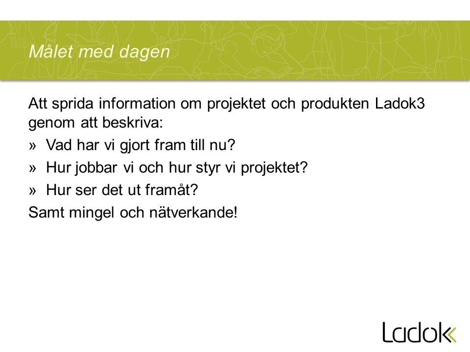 Målet med dagen Att sprida information om projektet och produkten Ladok3 genom att beskriva: »Vad har vi gjort fram till nu.