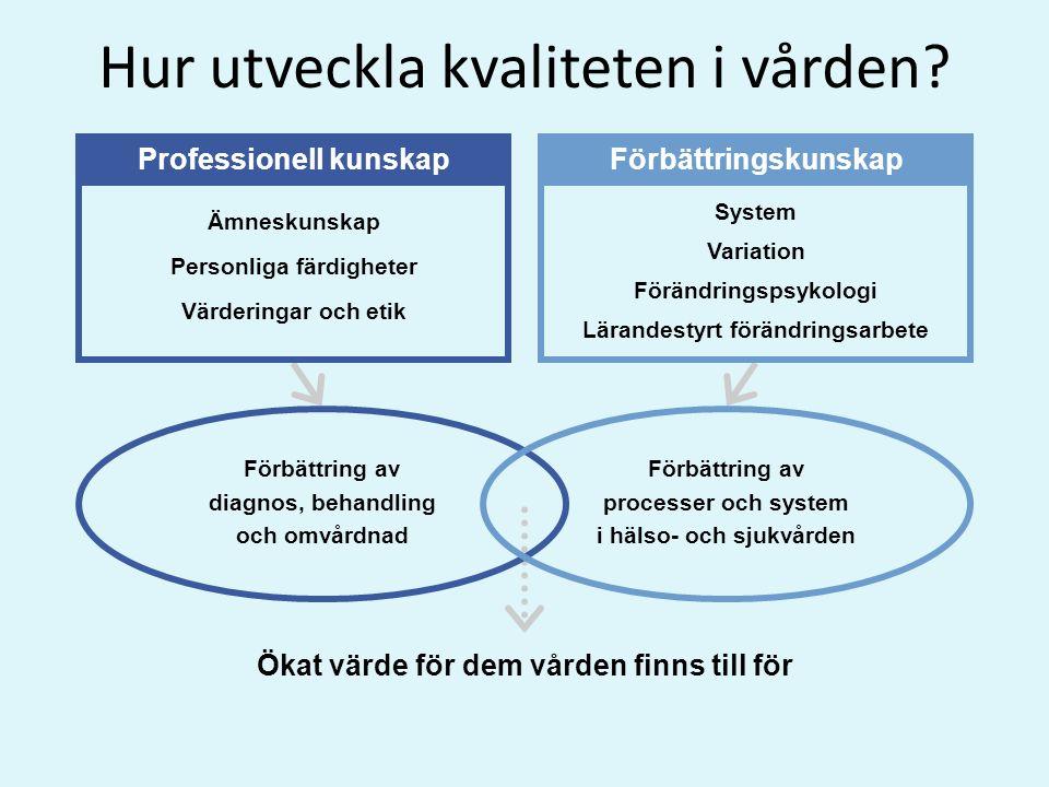 Ämneskunskap Personliga färdigheter Värderingar och etik System Variation Förändringspsykologi Lärandestyrt förändringsarbete Professionell kunskapFör