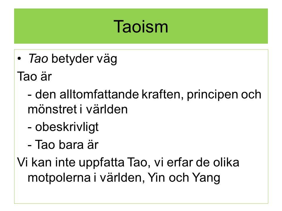 Taoism Tao betyder väg Tao är - den alltomfattande kraften, principen och mönstret i världen - obeskrivligt - Tao bara är Vi kan inte uppfatta Tao, vi erfar de olika motpolerna i världen, Yin och Yang