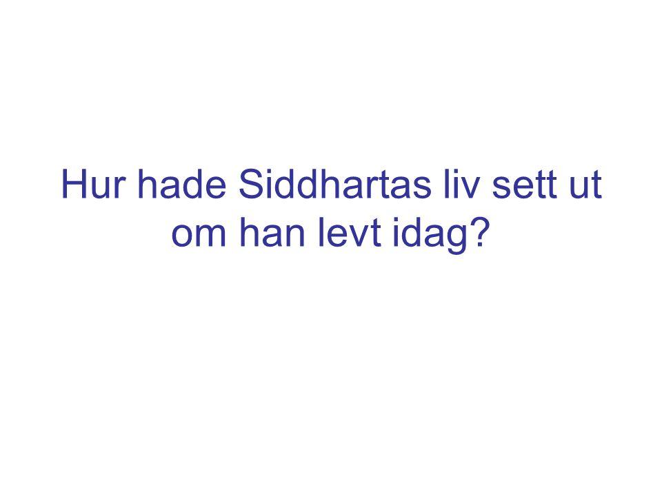 Hur hade Siddhartas liv sett ut om han levt idag?