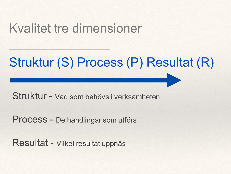 Struktur (S) Process (P) Resultat (R) Struktur - Vad som behövs i verksamheten Process - De handlingar som utförs Resultat - Vilket resultat uppnås Kvalitet tre dimensioner