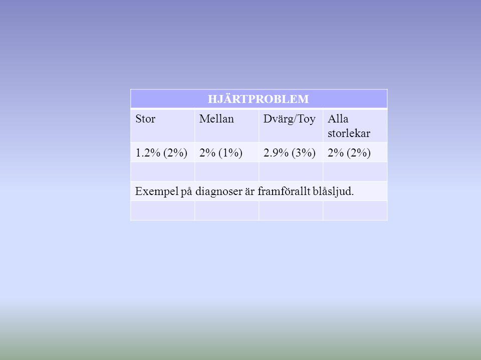 HJÄRTPROBLEM StorMellanDvärg/ToyAlla storlekar 1.2% (2%)2% (1%)2.9% (3%)2% (2%) Exempel på diagnoser är framförallt blåsljud.