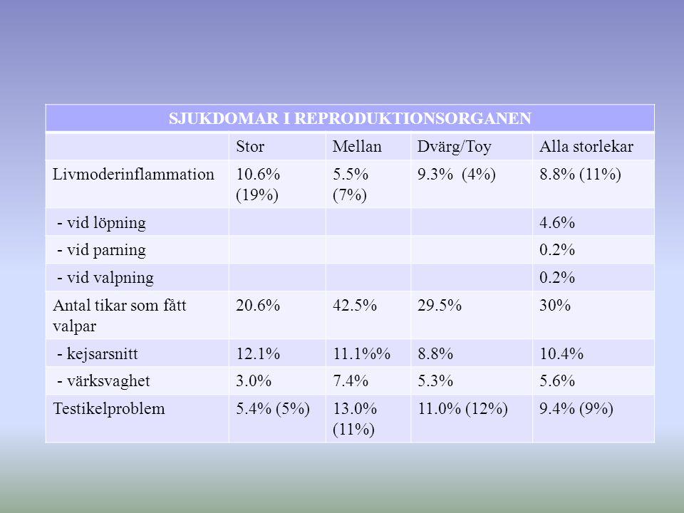 SJUKDOMAR I REPRODUKTIONSORGANEN StorMellanDvärg/ToyAlla storlekar Livmoderinflammation10.6% (19%) 5.5% (7%) 9.3% (4%)8.8% (11%) - vid löpning4.6% - vid parning0.2% - vid valpning0.2% Antal tikar som fått valpar 20.6%42.5%29.5%30% - kejsarsnitt12.1%11.1%8.8%10.4% - värksvaghet3.0%7.4%5.3%5.6% Testikelproblem5.4% (5%)13.0% (11%) 11.0% (12%)9.4% (9%)