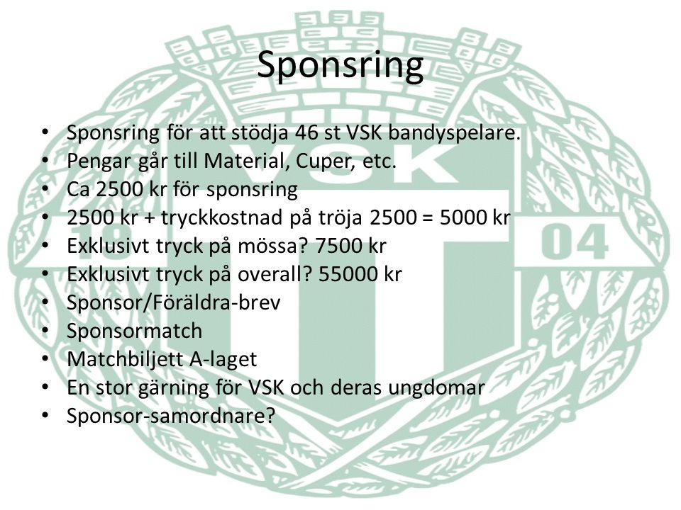 Sponsring Sponsring för att stödja 46 st VSK bandyspelare.