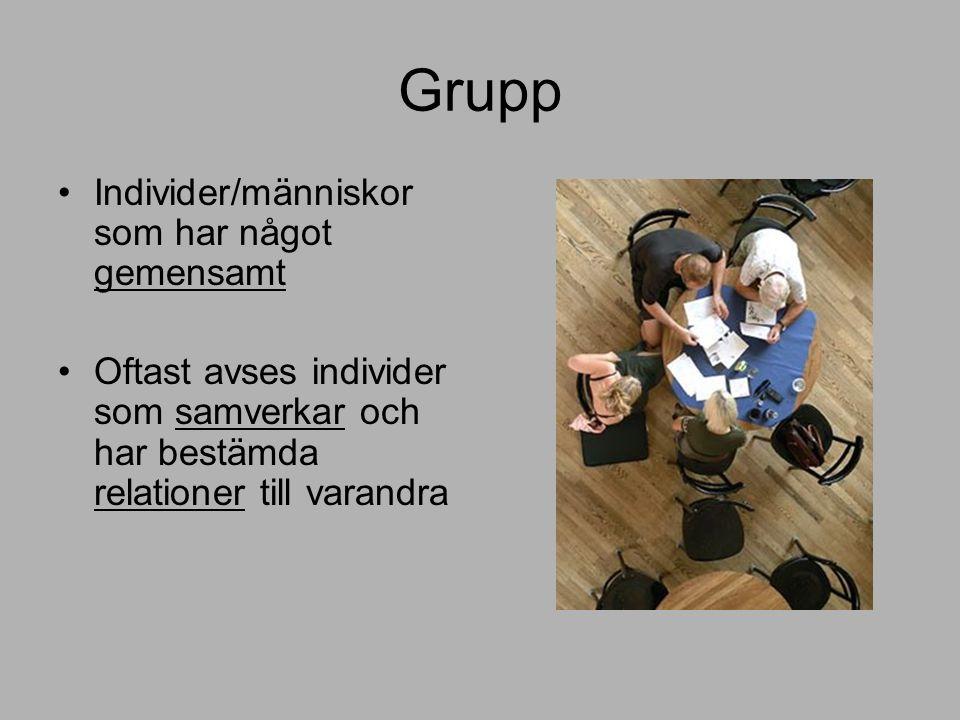 Grupp Individer/människor som har något gemensamt Oftast avses individer som samverkar och har bestämda relationer till varandra