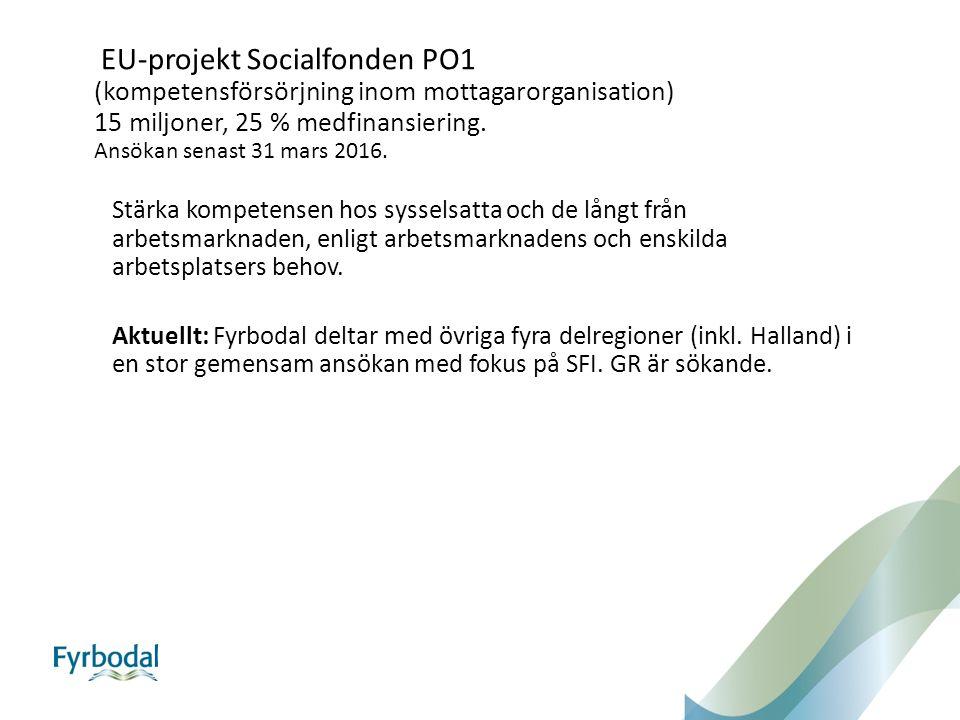 EU-projekt Socialfonden PO1 (kompetensförsörjning inom mottagarorganisation) 15 miljoner, 25 % medfinansiering.