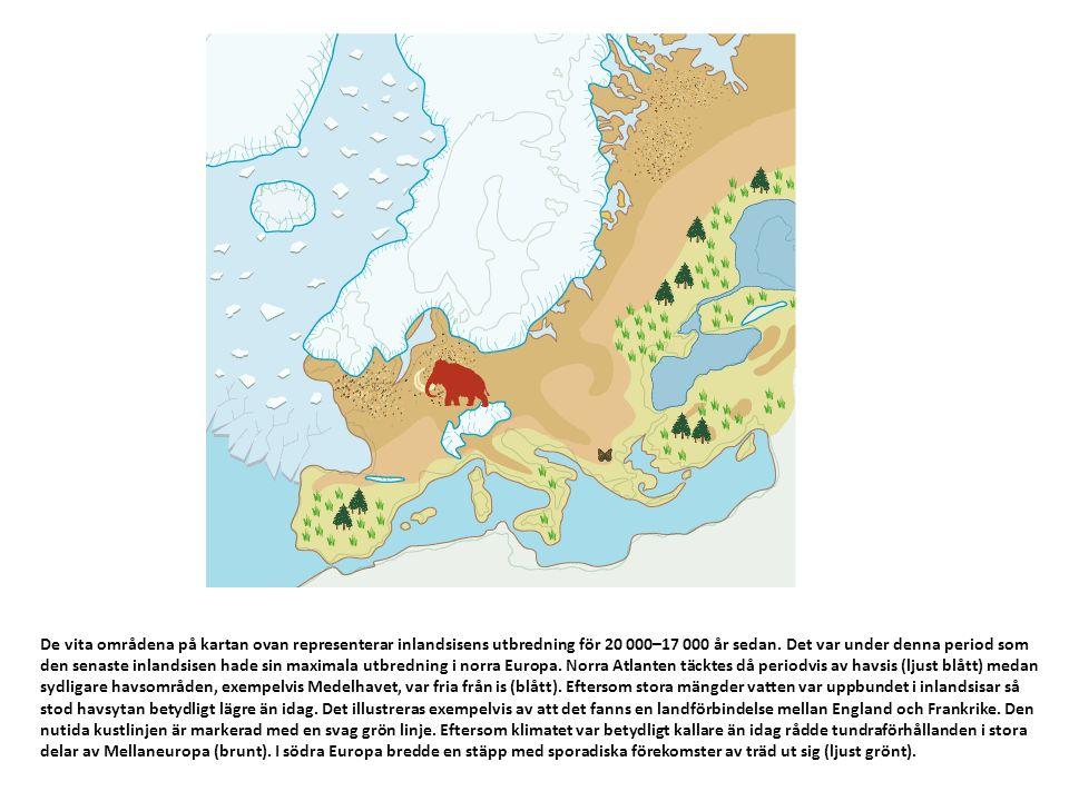 De vita områdena på kartan ovan representerar inlandsisens utbredning för 20 000–17 000 år sedan.