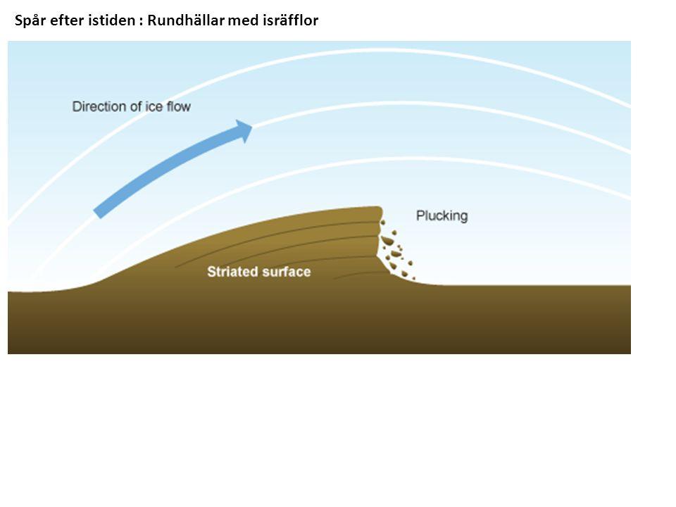 Spår efter istiden : Rundhällar med isräfflor