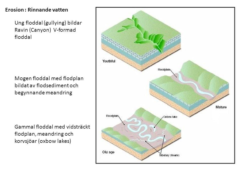 Ung floddal (gullying) bildar Ravin (Canyon) V-formad floddal Mogen floddal med flodplan bildat av flodsediment och begynnande meandring Gammal floddal med vidsträckt flodplan, meandring och korvsjöar (oxbow lakes) Erosion : Rinnande vatten