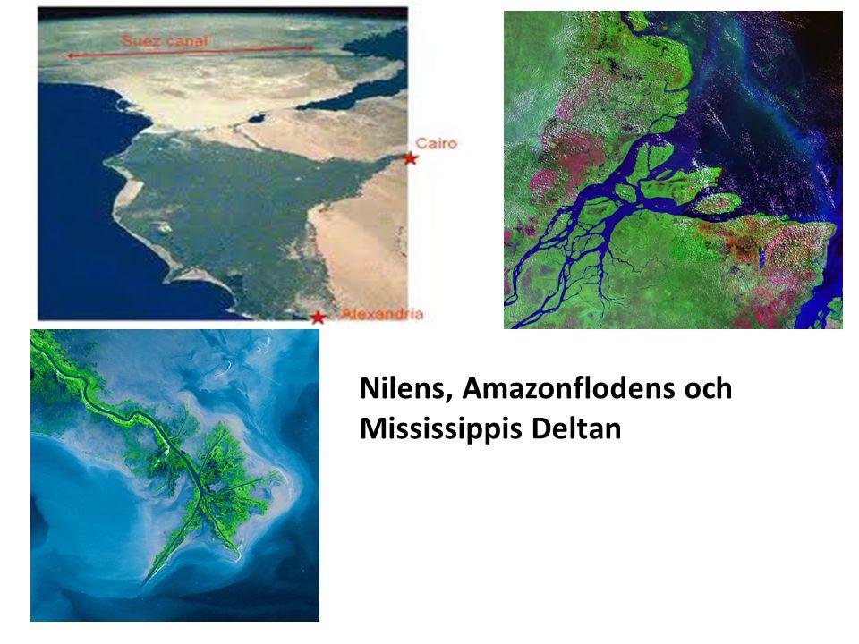 Nilens, Amazonflodens och Mississippis Deltan