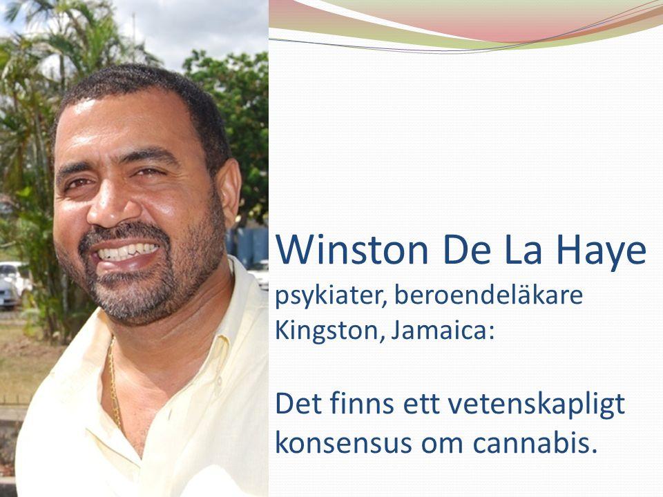 Winston De La Haye psykiater, beroendeläkare Kingston, Jamaica: Det finns ett vetenskapligt konsensus om cannabis.