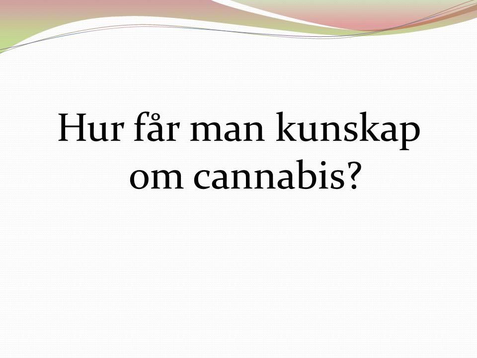 Hur får man kunskap om cannabis