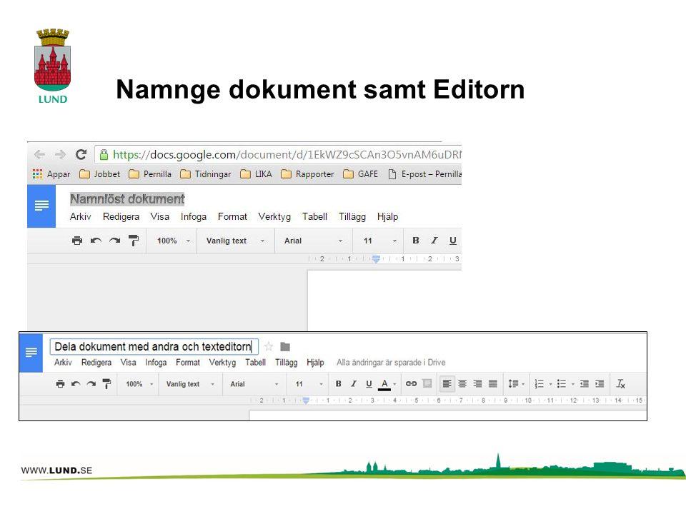 Namnge dokument samt Editorn