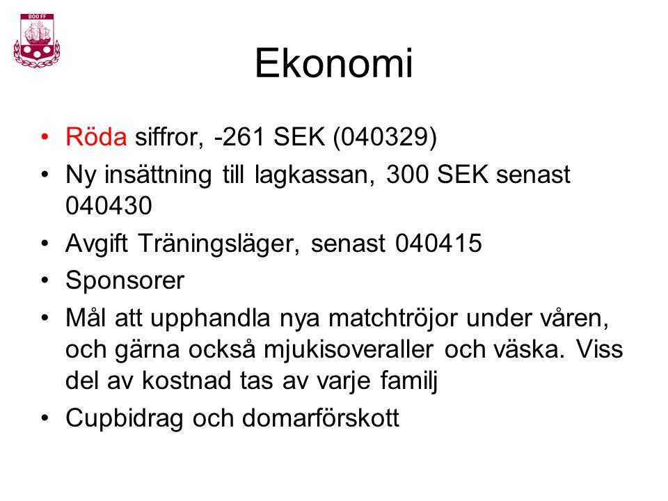 Ekonomi Röda siffror, -261 SEK (040329) Ny insättning till lagkassan, 300 SEK senast 040430 Avgift Träningsläger, senast 040415 Sponsorer Mål att upph